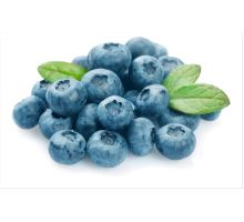 Lyofilizované ovoce borůvky 15 g