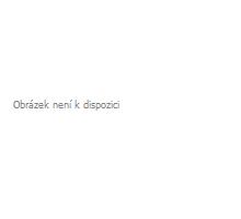 AWA superfoods Moringa prášek RAW 200 g