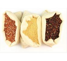 Znáte přínosy semínek Quinoa?