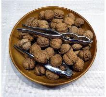 Co vše dokáží vlašské ořechy